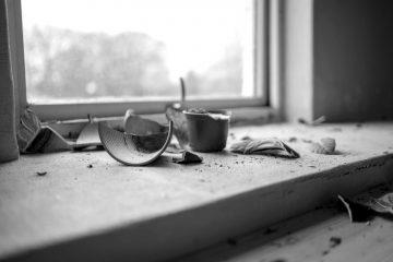 Cocci di vaso rotto   © Daniel Tafjord
