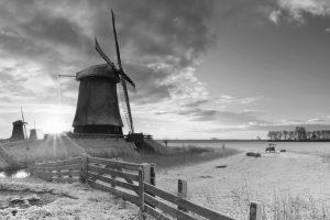 Olanda, mulino a vento   © Sara Winter