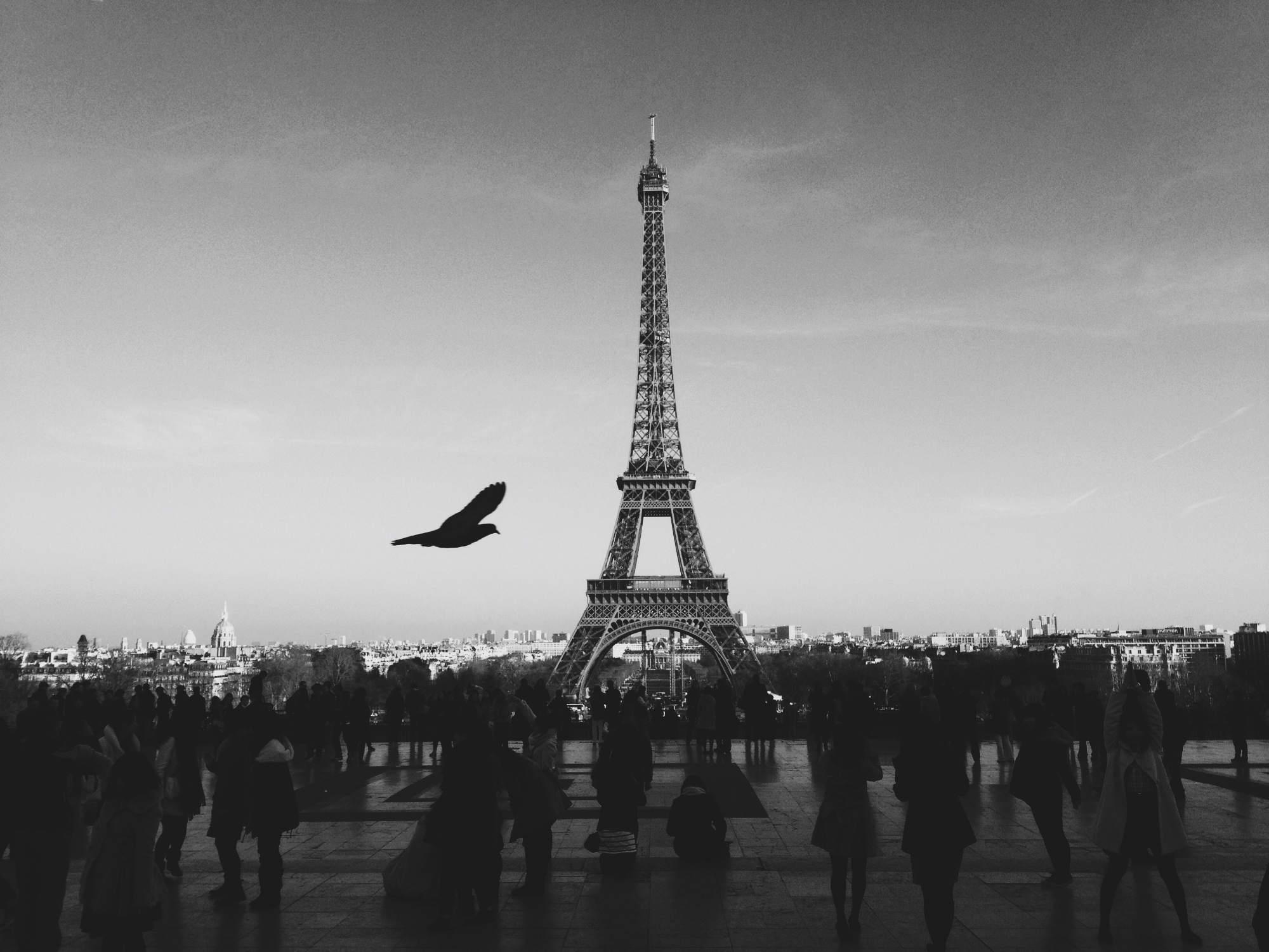 Parigi | © Louis Pellissier