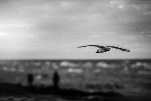 Ucraina, Mar Nero   © The Nigmatic