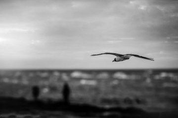 Ucraina, Mar Nero | © The Nigmatic