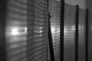 Rete divisoria | © Phil Botha