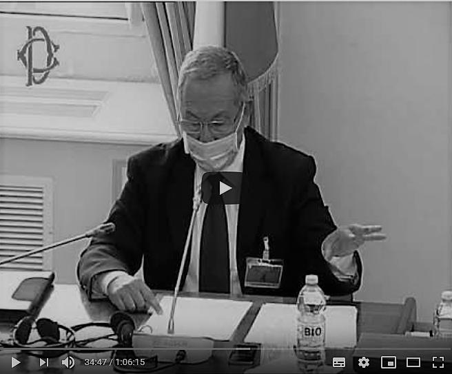 Luca Lovisolo - Audizione alla Camera dei deputati, 6 agosto 2020, su influenze straniere in Italia